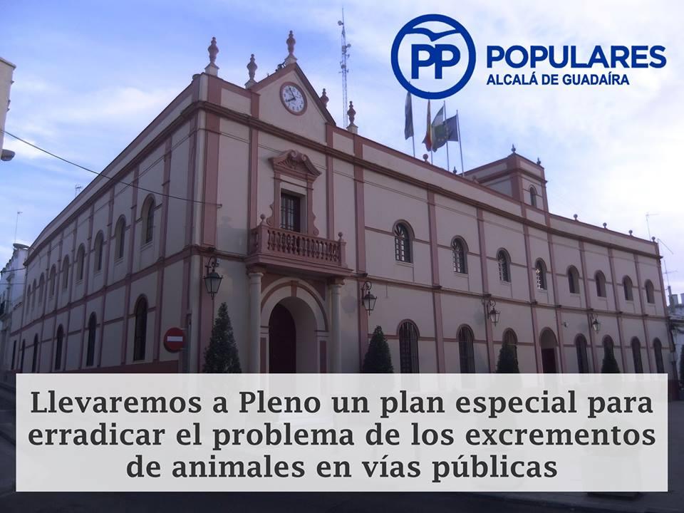 Plan para erradicar los excrementos de mascotas de las vía pública