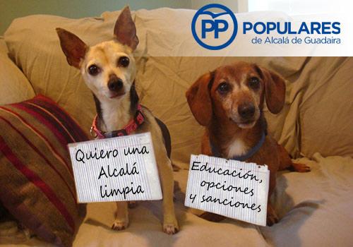perros-limpios-educados-sanciones-pp