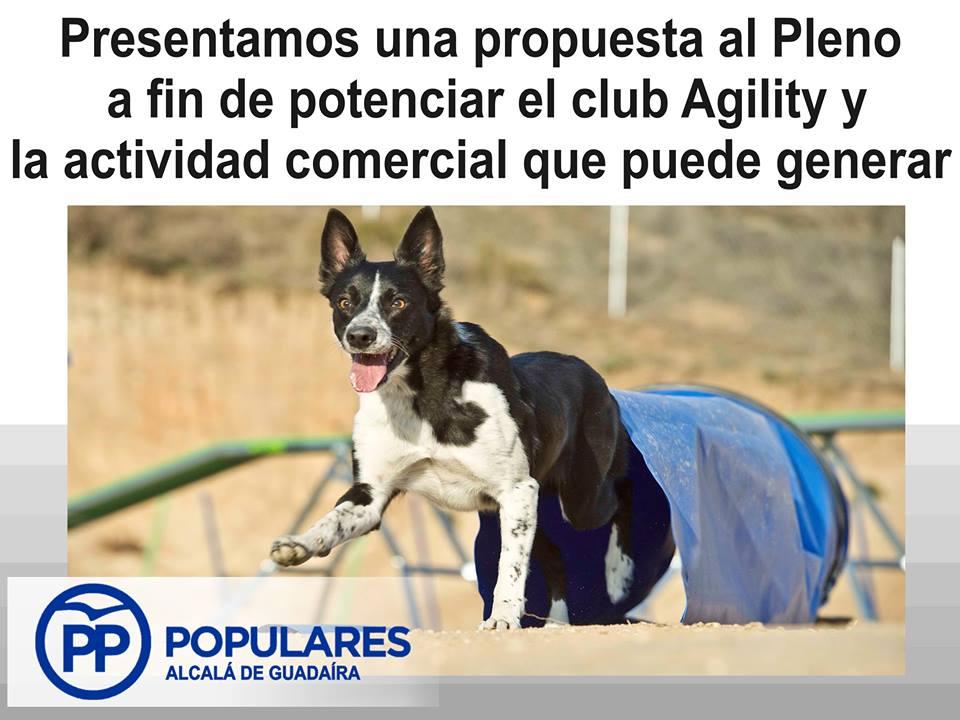 Moción para apoyar al Club Agility de Alcalá y su práctica deportiva con perros