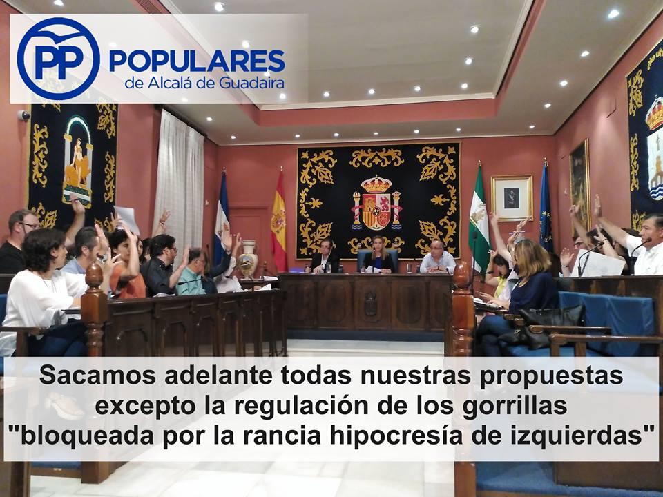Nuestras propuestas avanzan para mejorar Alcalá.