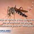 mosquito-tigre-alcala-de-guadaira