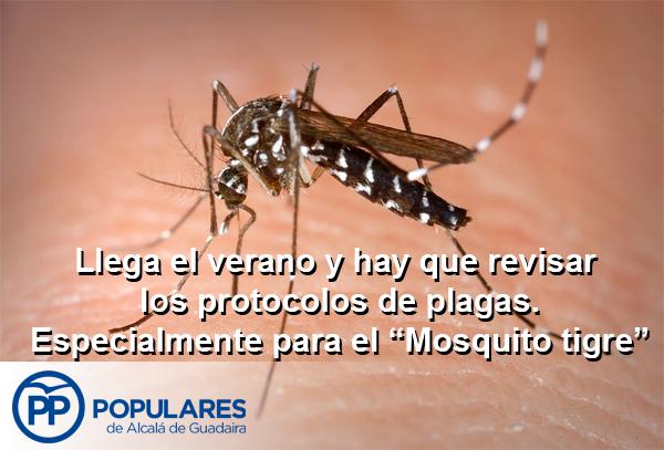 """Protocolos de prevención de incendios y plagas, con especial atención al """"Mosquito tigre"""""""
