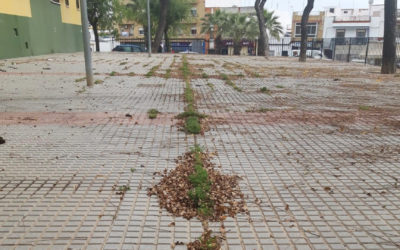 El PP de Alcalá denuncia la situación de absoluto abandono que sufre desde hace años la Plaza Villa de Rota