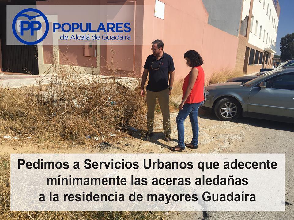 Las calles y accesos frecuentados por personas mayores deben ser una prioridad en Alcalá